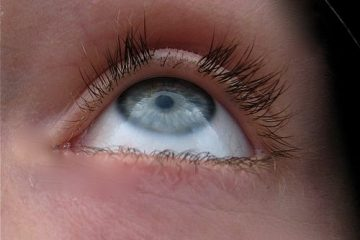how long does it take for eyelashes to grow back